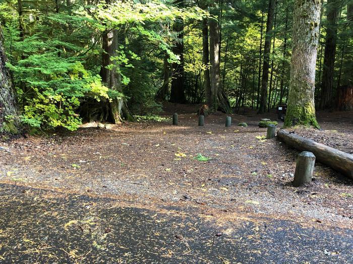 Ohanapecosh Campground - Site A029 Parking Area