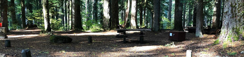Ohanapecosh Campground - Site A030