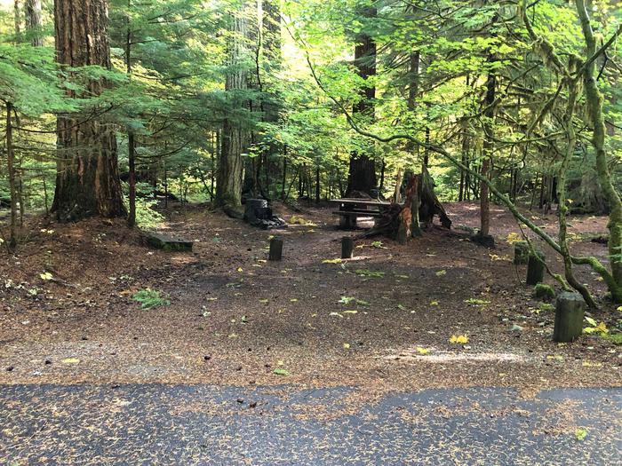 Ohanapecosh Campground - Site A031 Parking Area