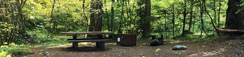 Ohanapecosh Campground - Site A039