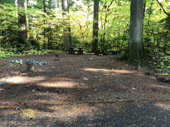 Ohanapecosh Campground - Site A039 Parking Area