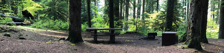 Ohanapecosh Campground - Site A044