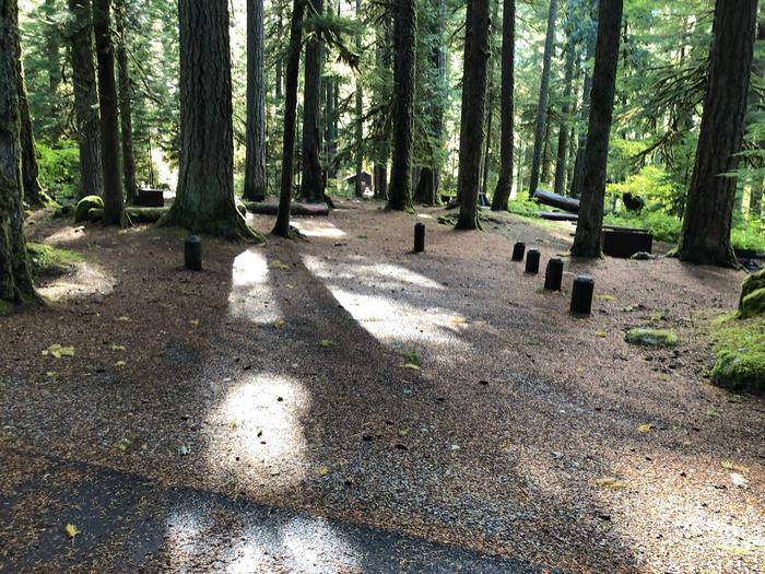 Ohanapecosh Campground - Site A044 Parking Area