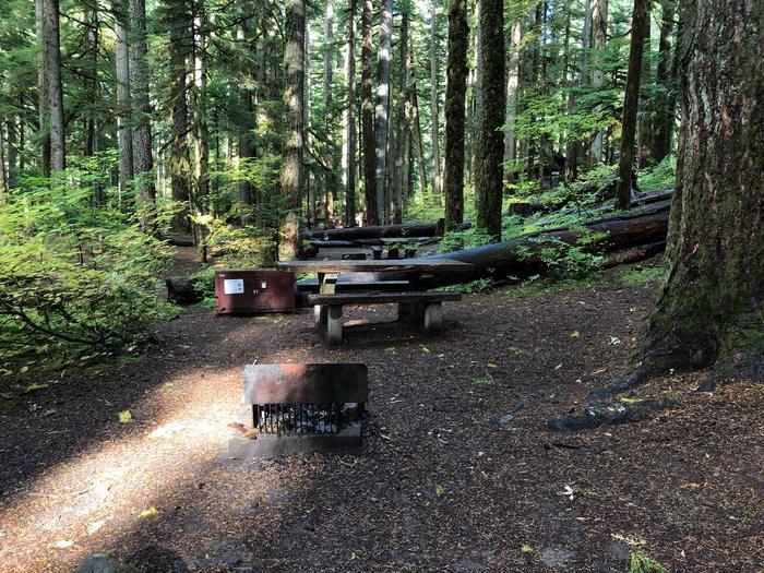 Ohanapecosh Campground - Site A047