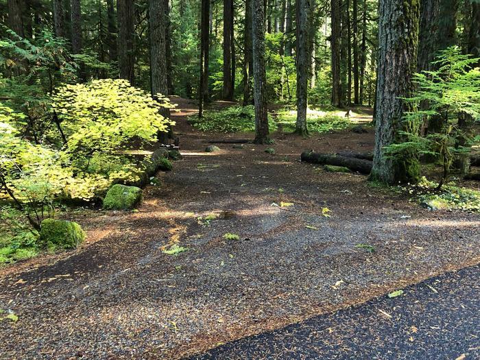 Ohanapecosh Campground - Site A047 Parking Area