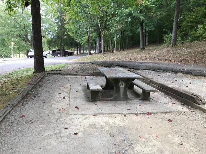 OBEY RIVER PARK SITE #117 TABLEOBEY RIVER PARK SITE #117