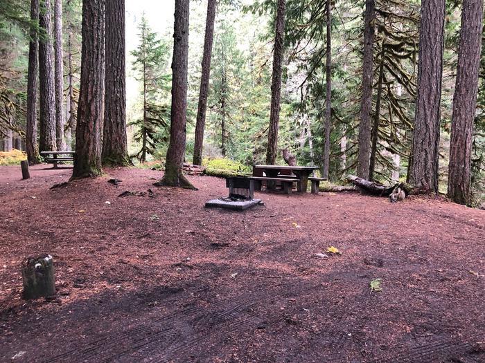 Ohanapecosh Campground - Site C001