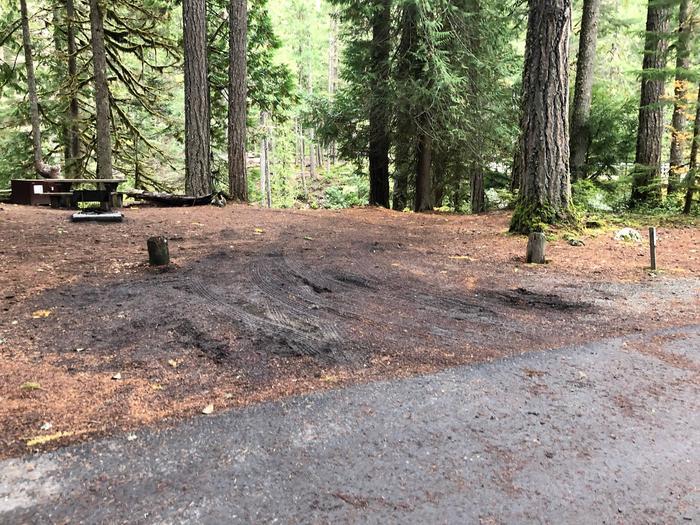 Ohanapecosh Campground - Site C001 Parking Area