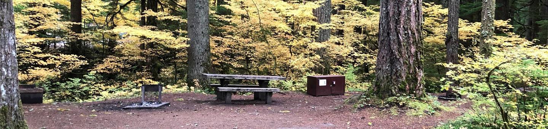 Ohanapecosh Campground - Site C002