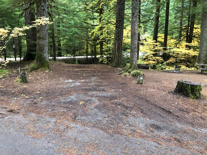 Ohanapecosh Campground - Site C002 Parking Area
