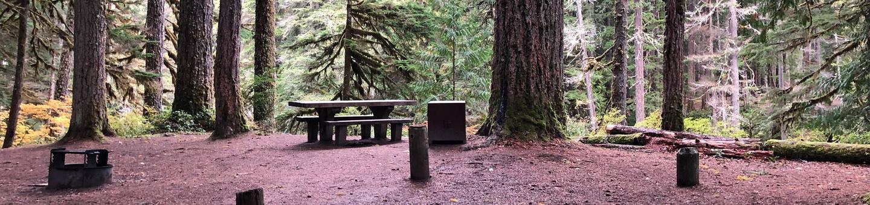 Ohanapecosh Campground - Site C003