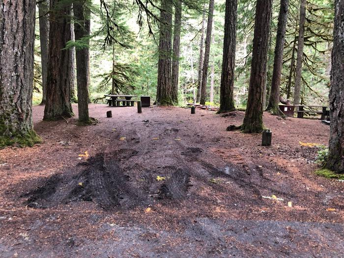Ohanapecosh Campground - Site C003 Parking Area