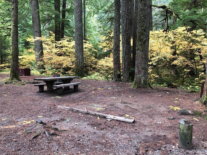Ohanapecosh Campground - Site C004