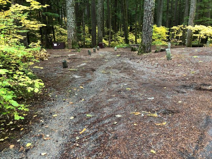 Ohanapecosh Campground - Site C004 Parking Area