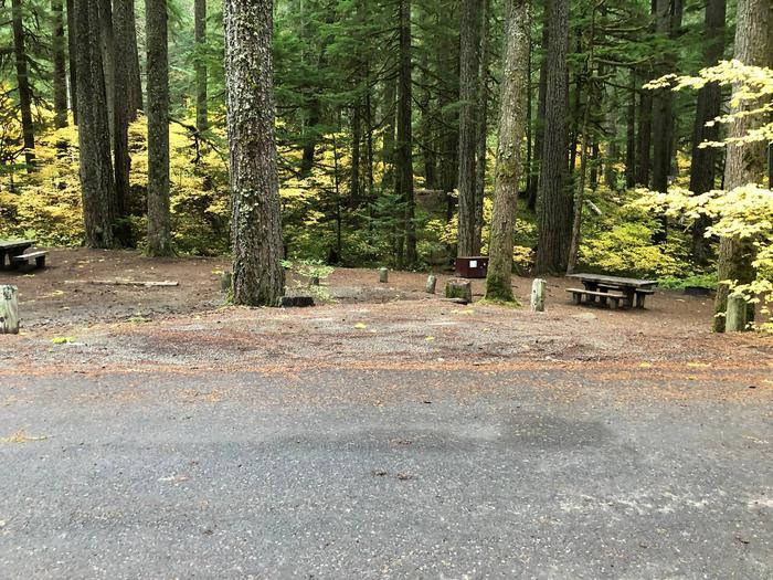 Ohanapecosh Campground - Site C005 Parking Area