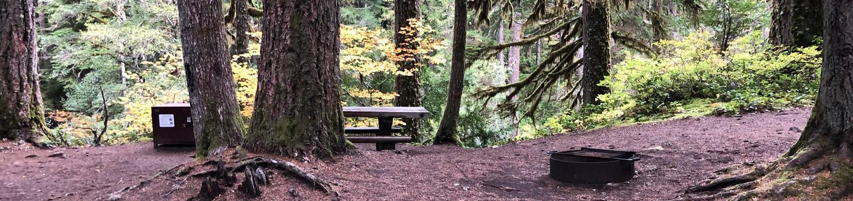 Ohanapecosh Campground - Site C006