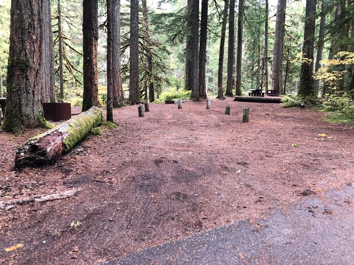 Ohanapecosh Campground - Site C006 Parking Area