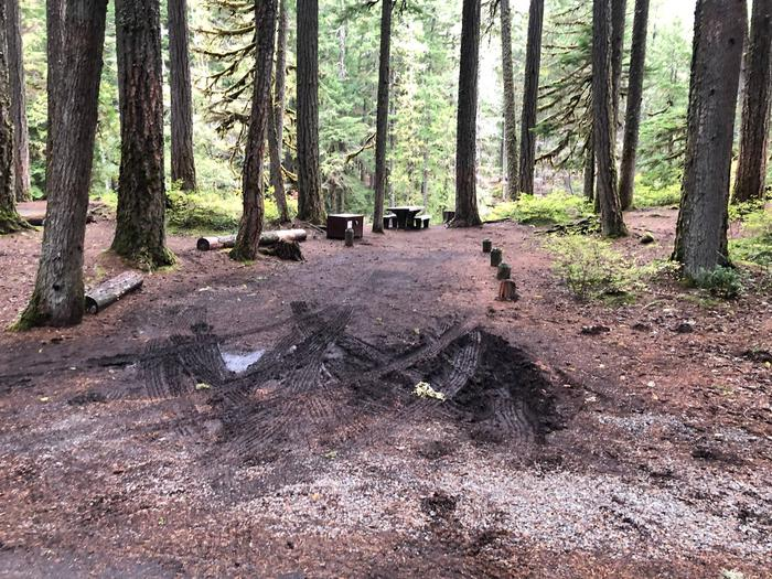 Ohanapecosh Campground - Site C008 Parking Area