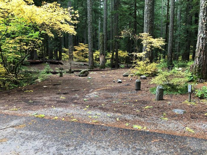 Ohanapecosh Campground - Site C009 Parking Area