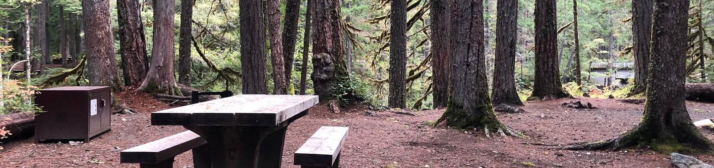 Ohanapecosh Campground - Site C010
