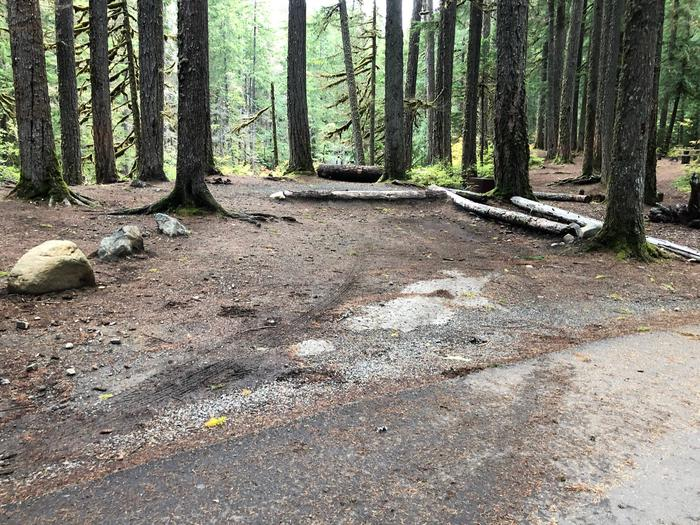 Ohanapecosh Campground - Site C010 Parking Area