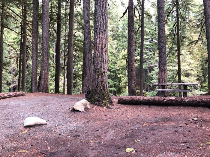 Ohanapecosh Campground - Site C011