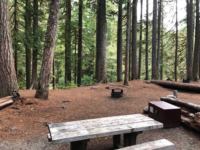 Ohanapecosh Campground - Site C013