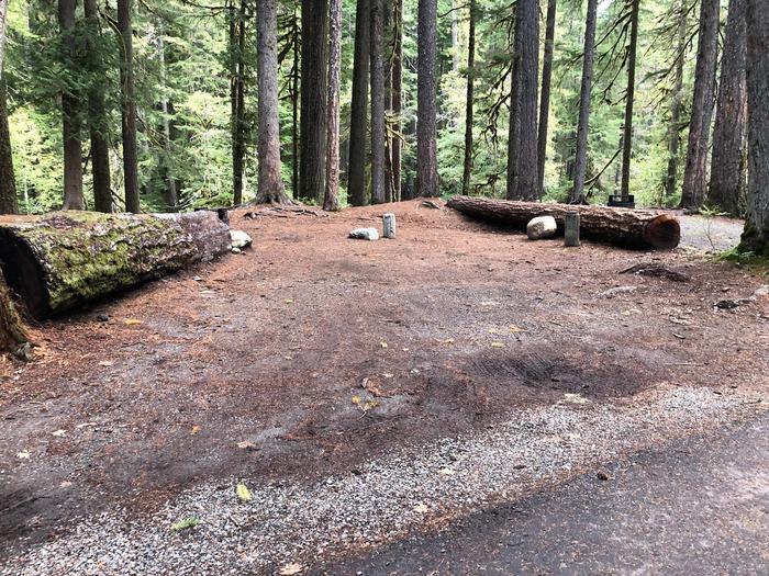 Ohanapecosh Campground - Site C013 Parking Area
