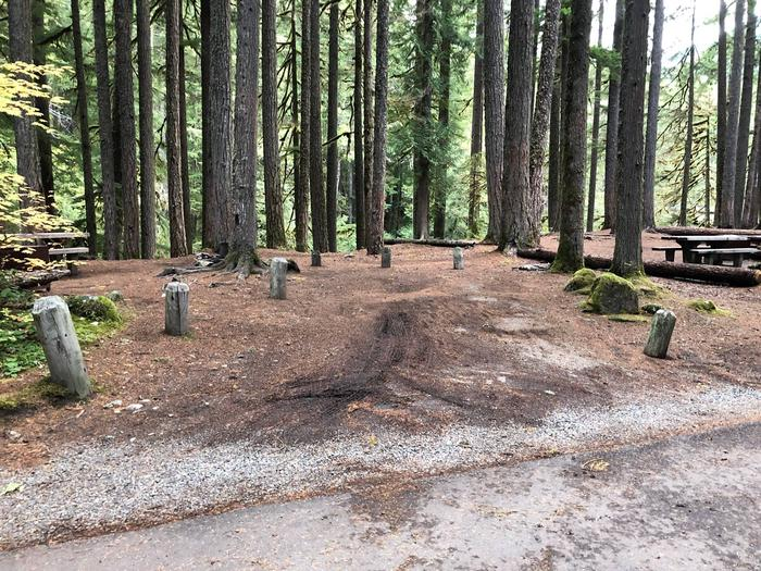 Ohanapecosh Campground - Site C015 Parking Area