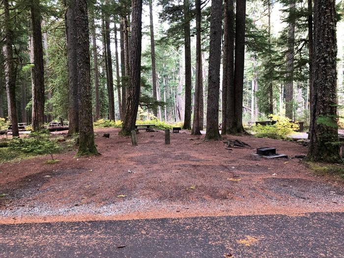 Ohanapecosh Campground - Site C016 Parking Area