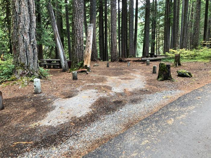 Ohanapecosh Campground - Site C017 Parking Area