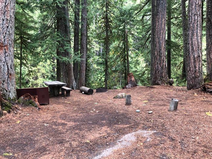 Ohanapecosh Campground - Site C017