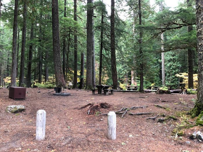 Ohanapecosh Campground - Site C022