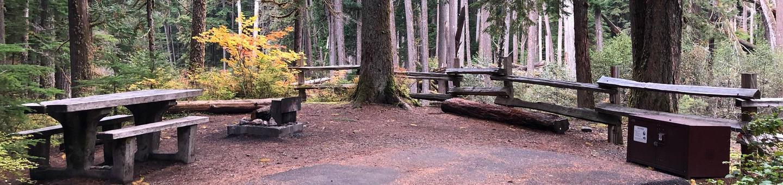 Ohanapecosh Campground - Site C023