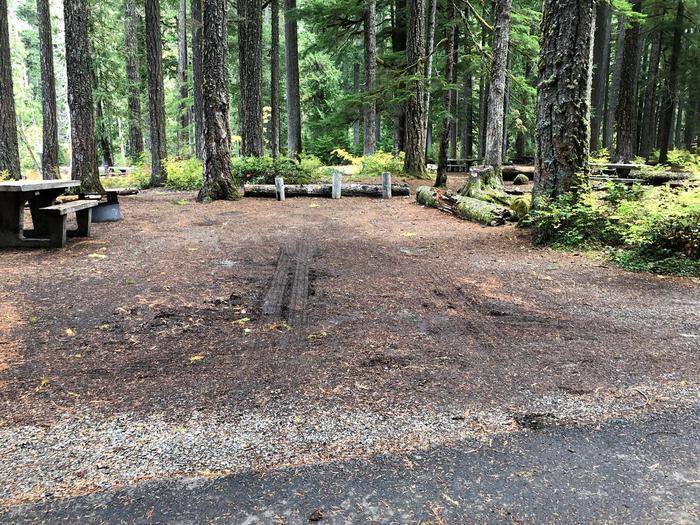 Ohanapecosh Campground - Site C024 Parking Area