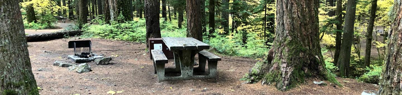 Ohanapecosh Campground - Site C025