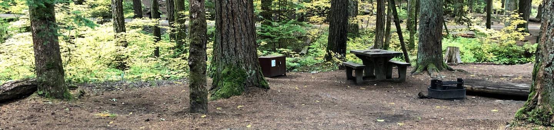 Ohanapecosh Campground - Site C028