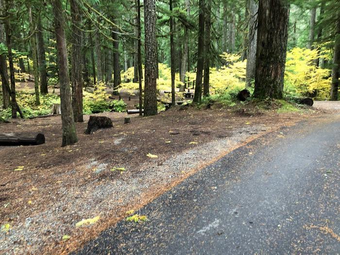 Ohanapecosh Campground - Site C028 Parking Area
