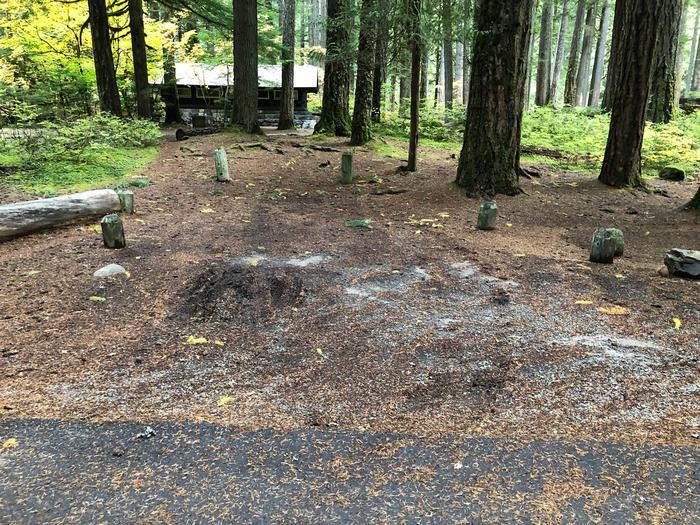 Ohanapecosh Campground - Site C029 Parking Area