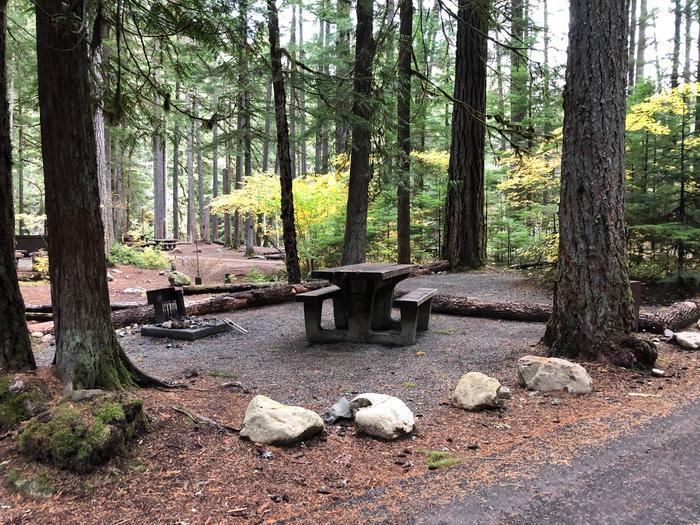 Ohanapecosh Campground - Site C031