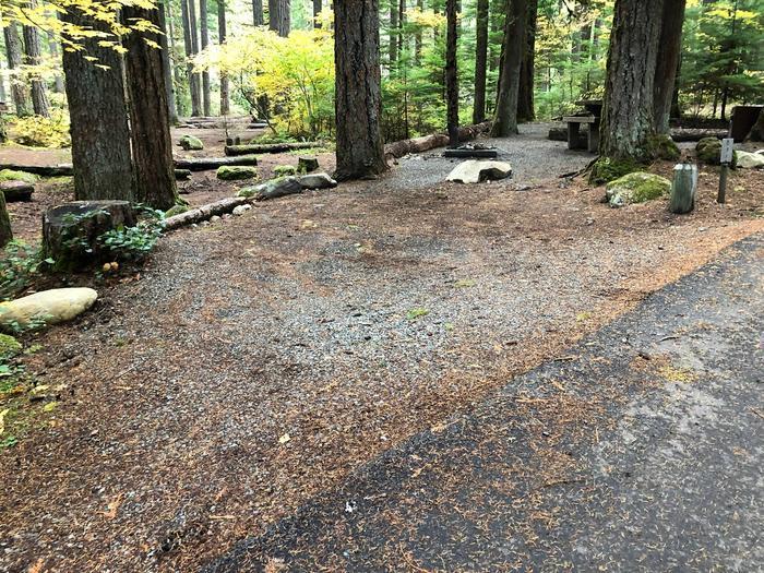 Ohanapecosh Campground - Site C031 Parking Area