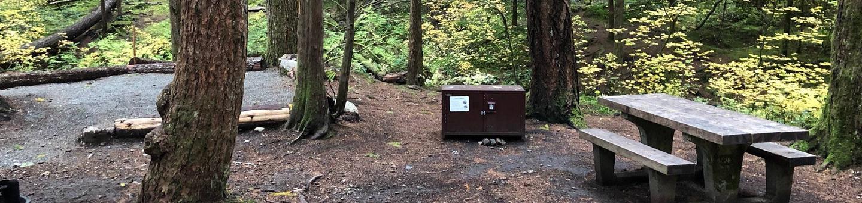 Ohanapecosh Campground - Site C032