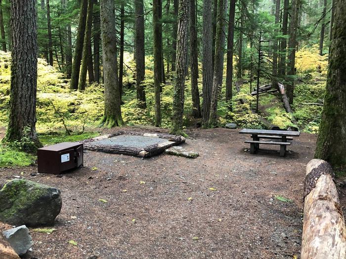 Ohanapecosh Campground - Site C033