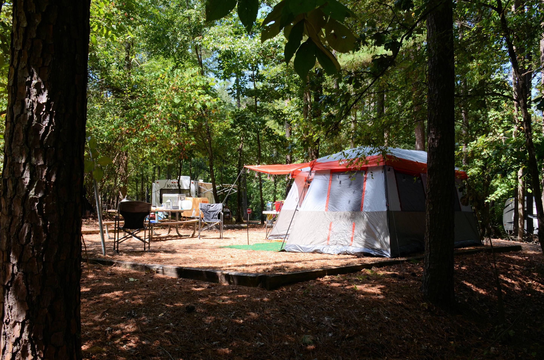 Campsite view.McKinney Campground, campsite 18.