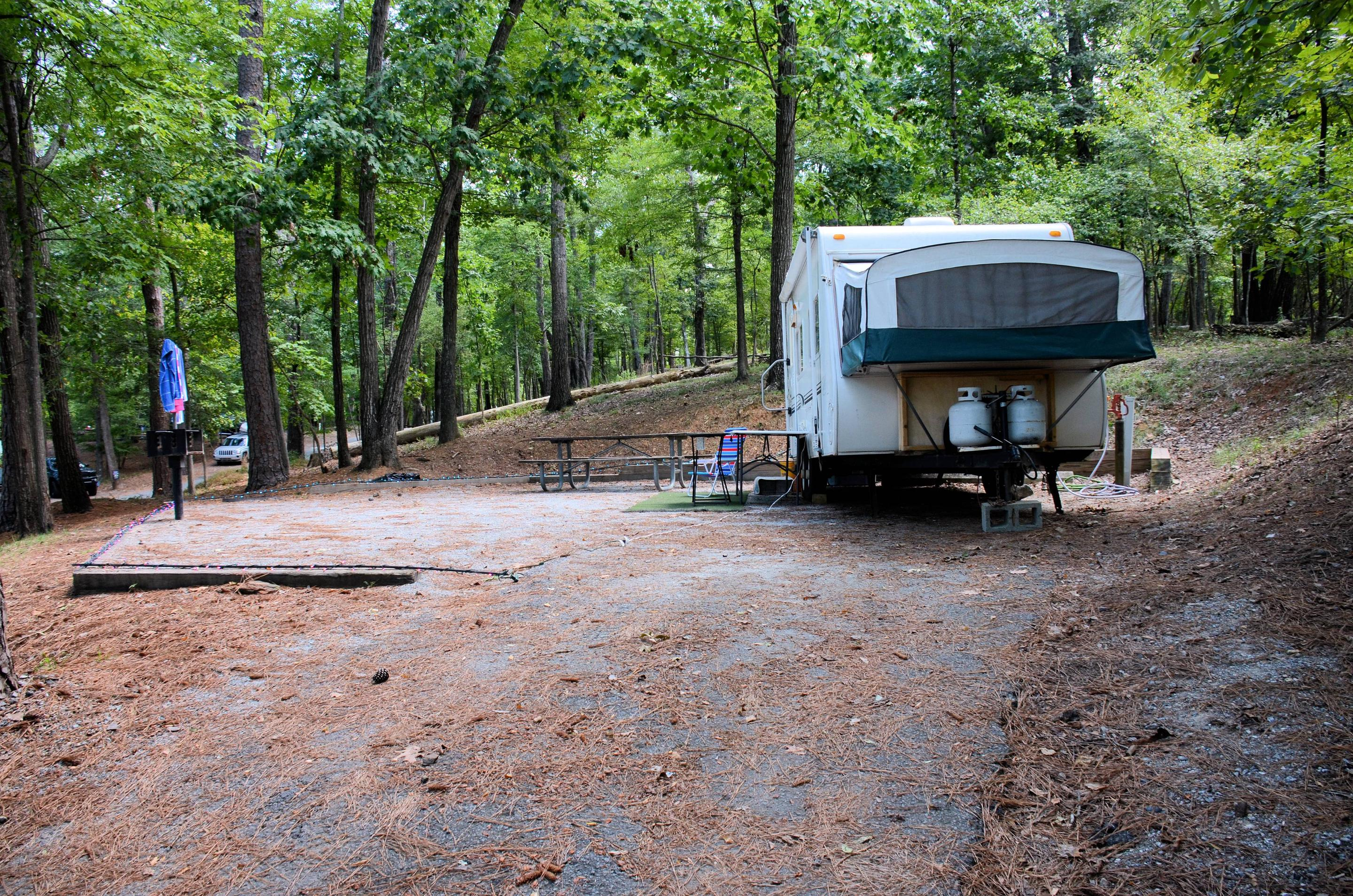 Awning-side clearance, campsite view.McKinney Campground, campsite 29.