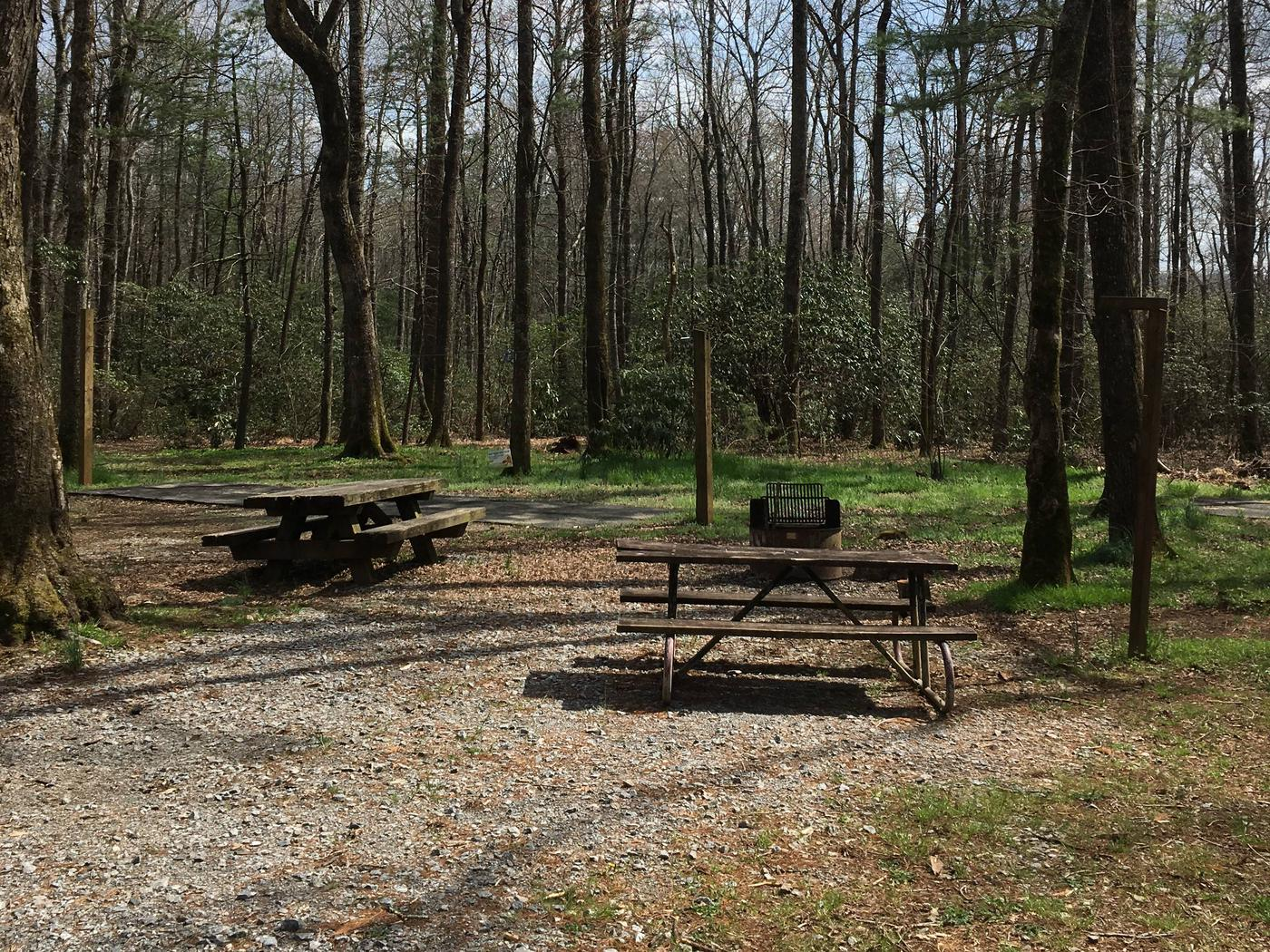 Site A3 - Single SiteSite A3 - Single Site featuring high line, picnic table, lantern pole, and grill.