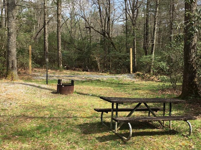 Site A6 - Single SiteSite A6 - Single site featuring high line, picnic table, lantern pole, and grill.