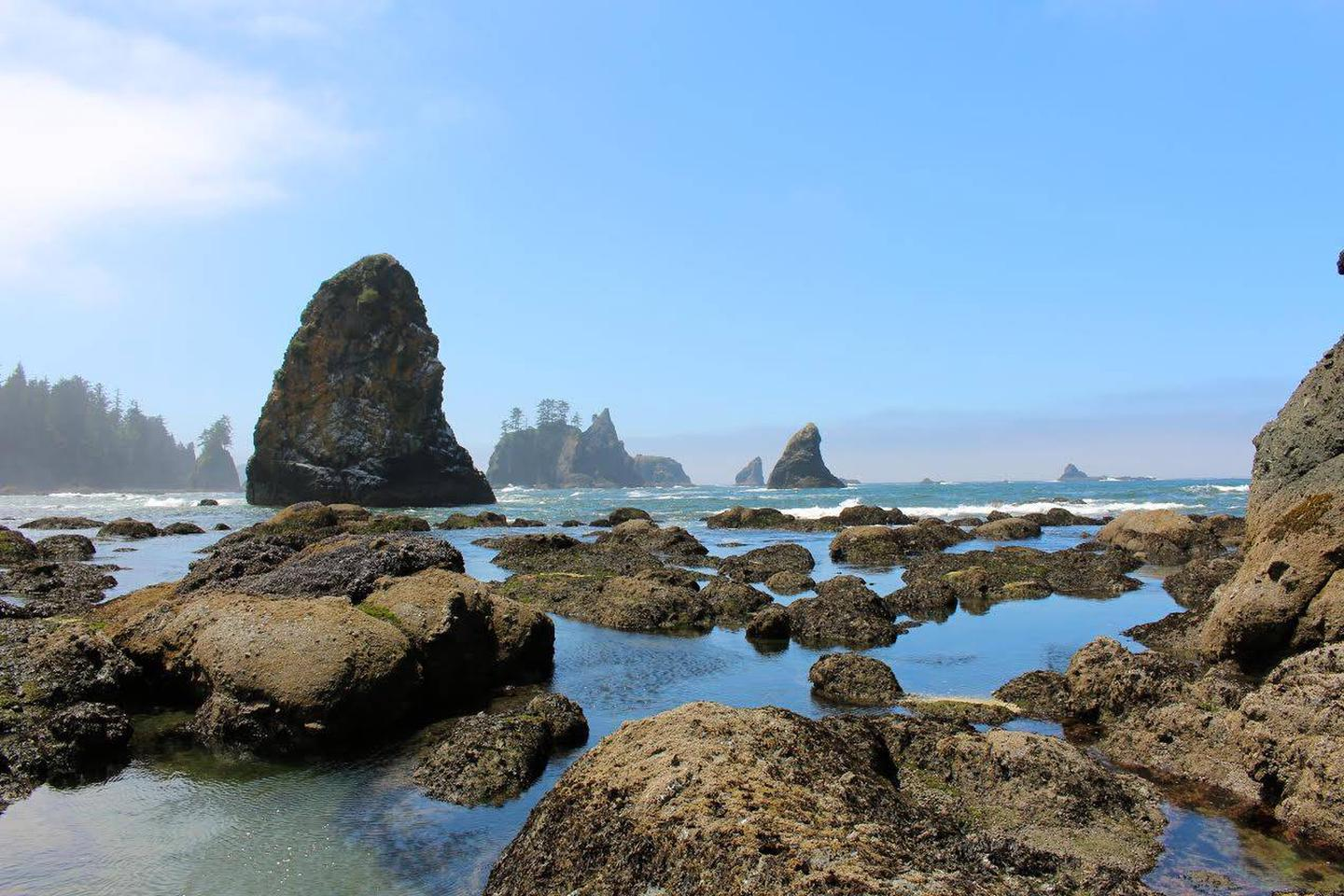 View of Pacific Ocean framed by sea stacks, with tide pools in the foreground.Point of the Arches, Shi Shi Beach