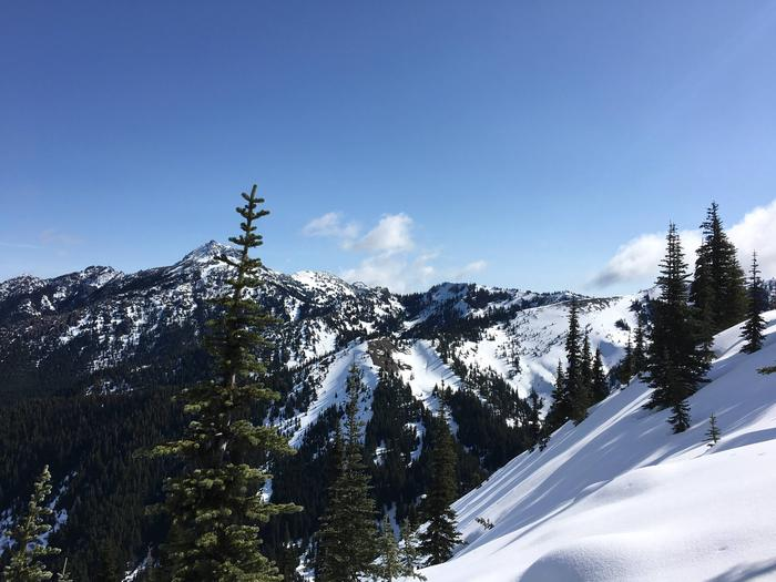 View of snow covered mountains in winter.Hurricane Ridge in Winter