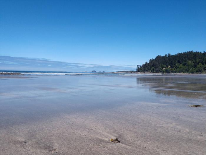 View of sandy beach exposed by low tide. Yellow Banks